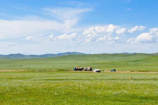 蒙古草地图片