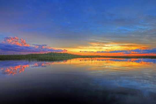 沼泽残阳景观图片