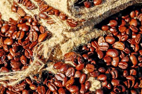颗粒饱满味道香醇的咖啡豆图片
