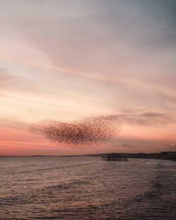 海洋傍晚景物图片