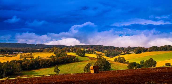 澳大利亚墨尔本郊外牧场风光图片