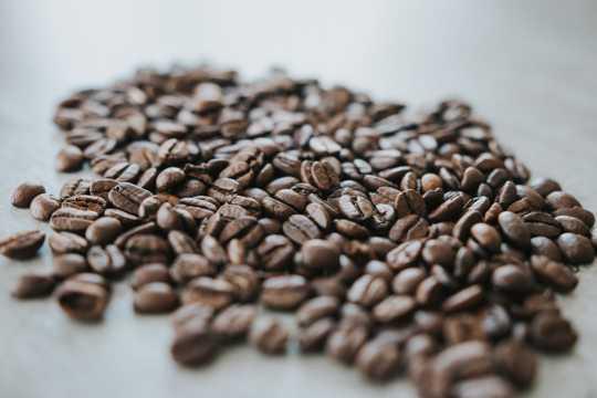 颗粒丰满的咖啡豆图片
