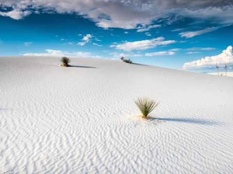 白色大漠景致图片