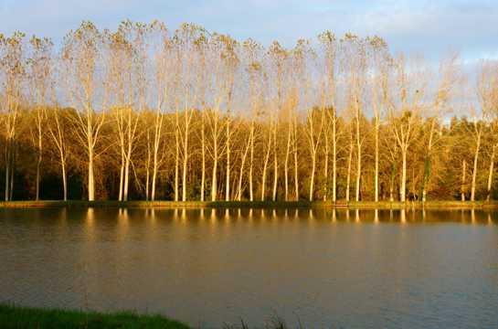 秋日江河自然风光图片