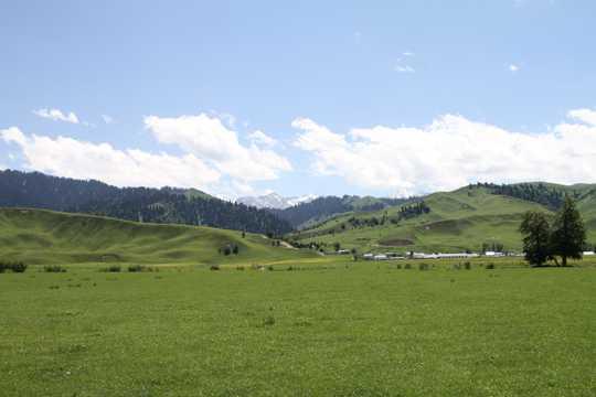 那拉提草坪风景图片