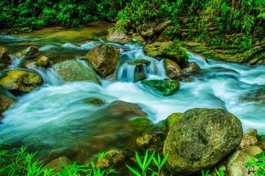 山间溪流景物图片