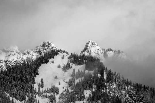 冬日高地雪山树木图片