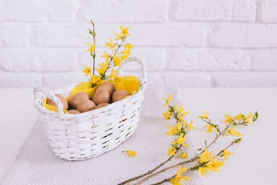 光滑的鸡蛋图片