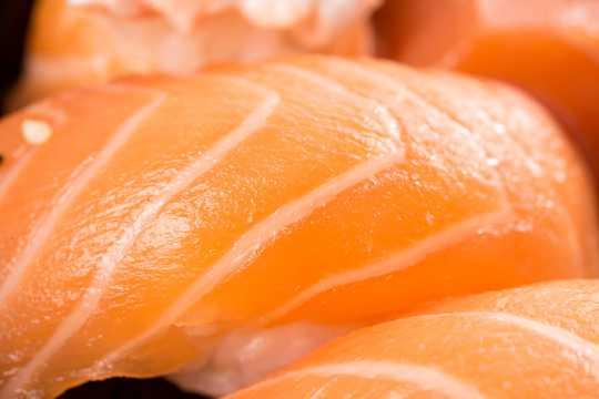 新鲜三文鱼高清图片