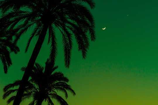 夜色弯弯的月亮图片