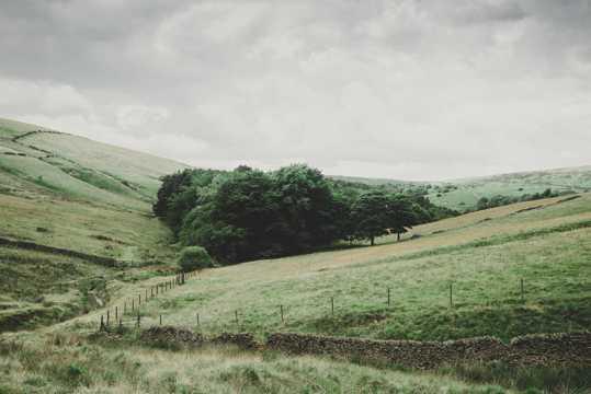 乡村农场图片