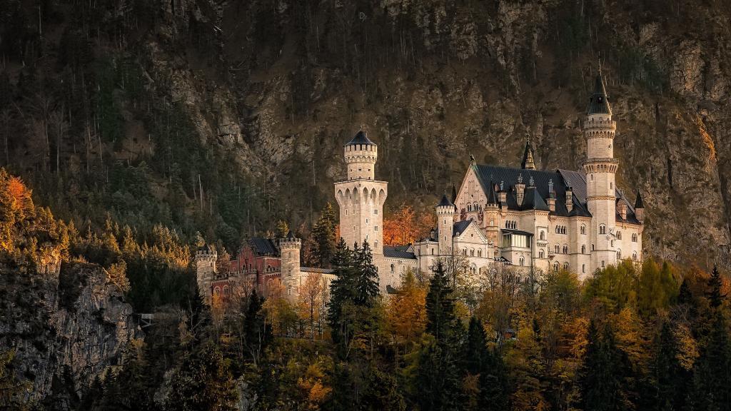 德国,巴伐利亚西南部,新天鹅堡,岩石,森林,秋天,十一月
