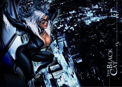 黑猫(felicia耐寒,奇迹漫画