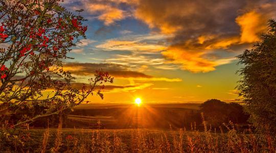 秋天,苏格兰,场,日落,山灰,天空,云