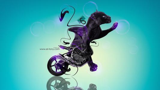 托尼科汉NCR M4幻想动物摩托车自行车猫豹豹蓝色紫罗兰色黑色塑料埃尔托尼汽车Photoshop设计艺术高清壁纸托尼·柯汗Photoshop风格摩托摩托车