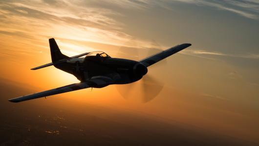 P-51,野马,战斗机,飞行