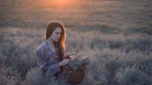 女孩,长长的头发,领域,高高的草丛,摄影师,卡特里娜·维尼克