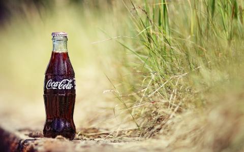 可口可乐,草,夏天,热,饮料,滴,瓶