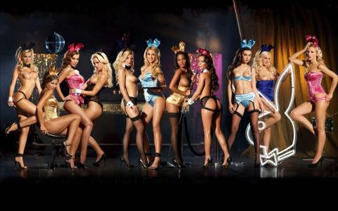 花花公子女孩,山雀,性感,裸体,美丽,乳房,腿,女孩,耳朵,山雀,腿,性感,野兔,内衣,吊带,丝袜,屁股