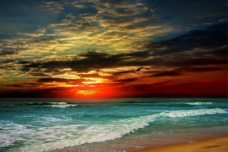 日落,沙滩,海,岸,天堂,热带,沙,海,海滩,日落,岸,沙子