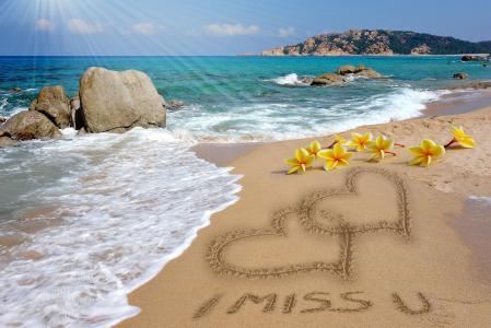 夏天,岸,海,海洋,海岸,沙,石头,巨石,鲜花,鸡蛋花,鸡蛋花,射线
