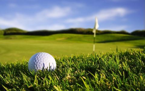 运动壁纸,草,高尔夫球,自然,照片,宏,壁纸,高尔夫,体育,游戏,宏,标志,草,天空