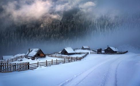 自然,山,森林,雪,冬天