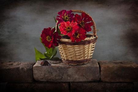 篮子,鲜花,砖,蝴蝶