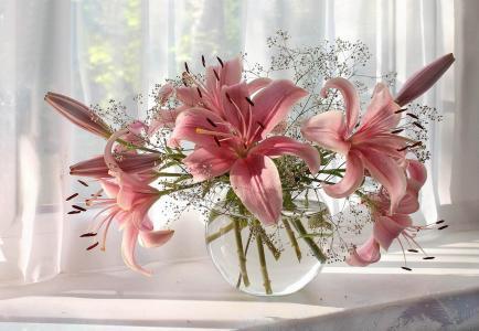 构成别致,静物,鲜花,花瓶,百合,白色,美女