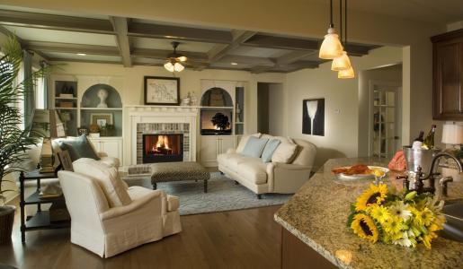 别墅,客厅,设计,室内,房子,风格