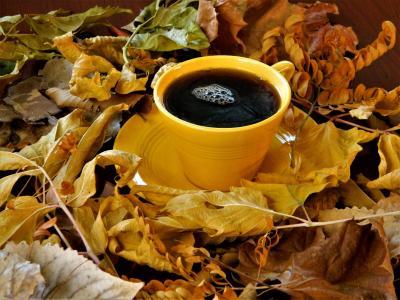 对象,咖啡,叶子