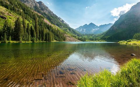 河湾,莎草,树木,山脉