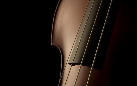 玩神经,弦乐,紧张