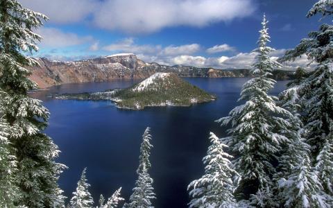 池塘,岛,冬季,冷杉,湖,树,天空,云