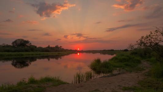 河流,莎草,天空,反射,衰落,八月,迈克尔·库什纳