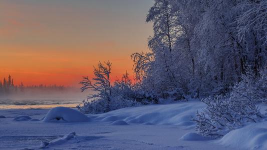 自然,风景,冬天,雪,树,灌木,河,北极