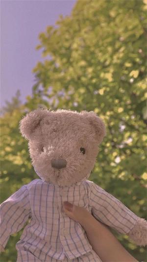 可爱玩偶熊