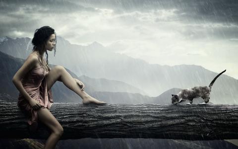 女孩,猫,山,元素