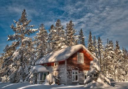 冬天,森林,房子,雪,美丽