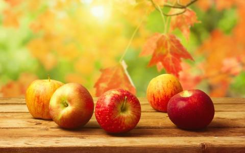 苹果,叶子,长凳,秋天