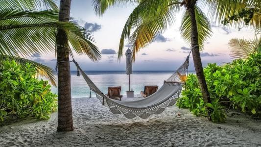 吊床,海滩,假期,棕榈,海洋,水