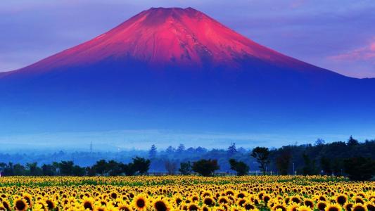 山,沃尔肯,阴霾,森林,向日葵