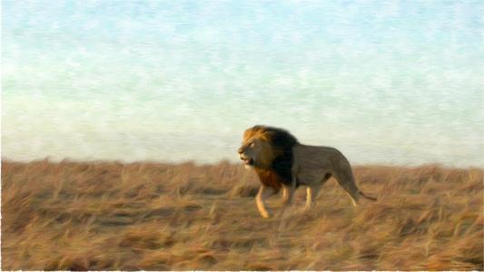 2d,图形,狮子