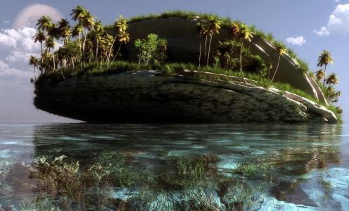 棕榈树,景观,克朗塔克,艺术,海,岛,水,岩石