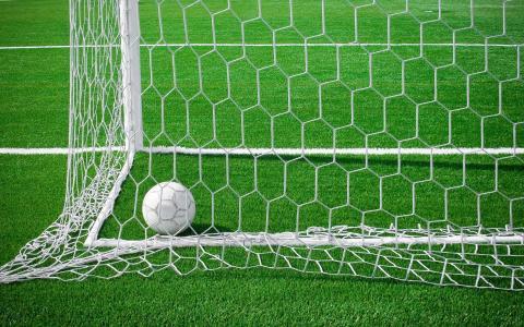 球在网,足球场,绿色,目标