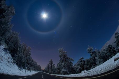明星,路,天空,森林,雪,冬季,星星,夜晚,美女