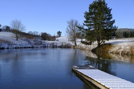 桥梁,水,树,雪