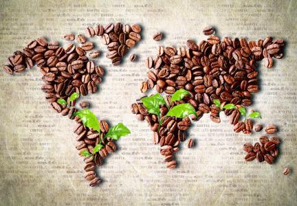 谷物,叶子,大洲,咖啡,地图