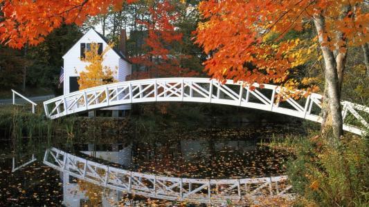 桥,在森林里的房子,湖,红黄色的叶子