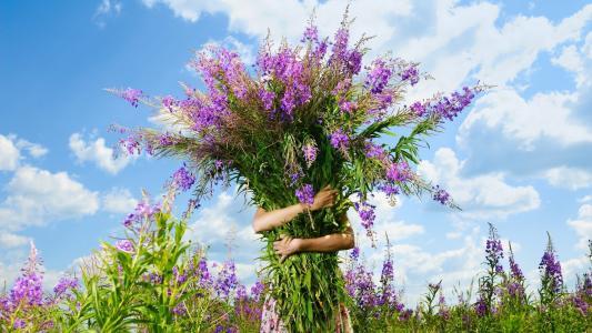 鲜花,林间空地,天空,花束,女孩